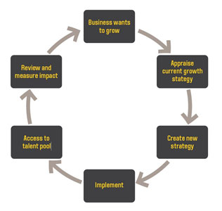 Business Growth Solution Diagram