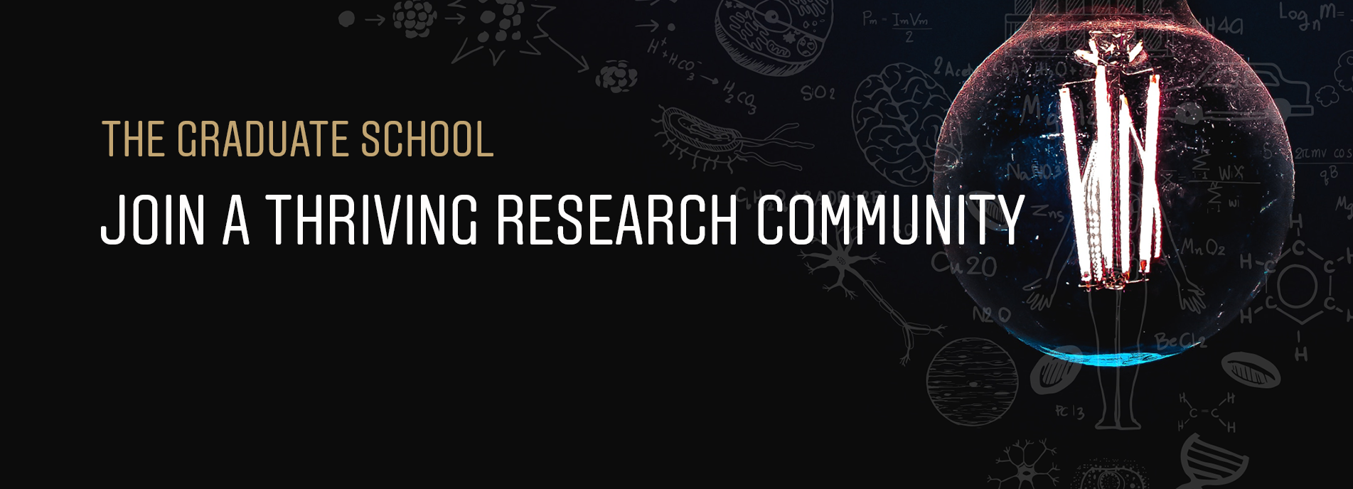 The Graduate School - Join a thriving research community