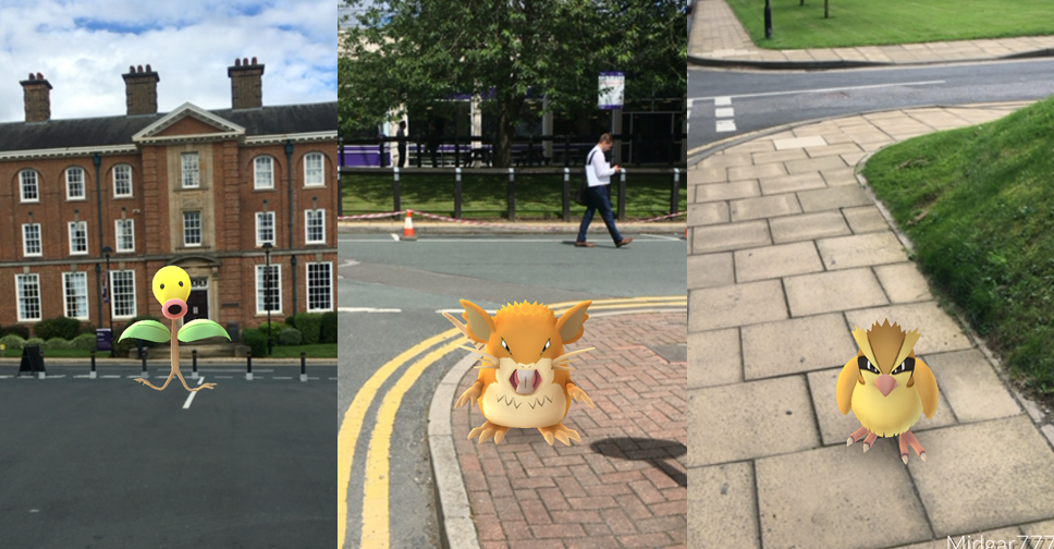 Pokemon on Campus