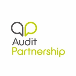 Audit partnership