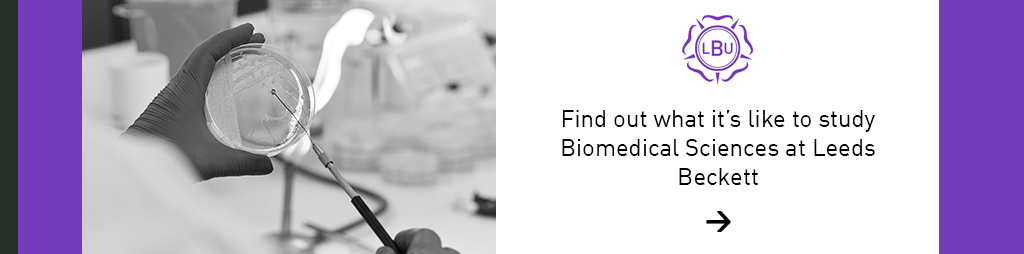 Study Biomedical Sciences here