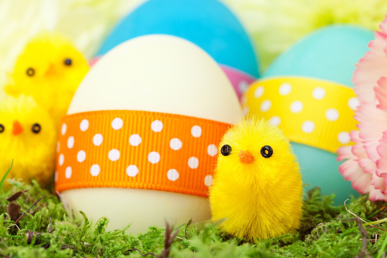 Easter eggs and chicks