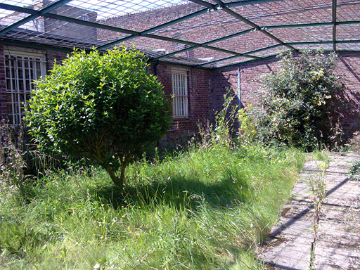 Garden and Exercise wing