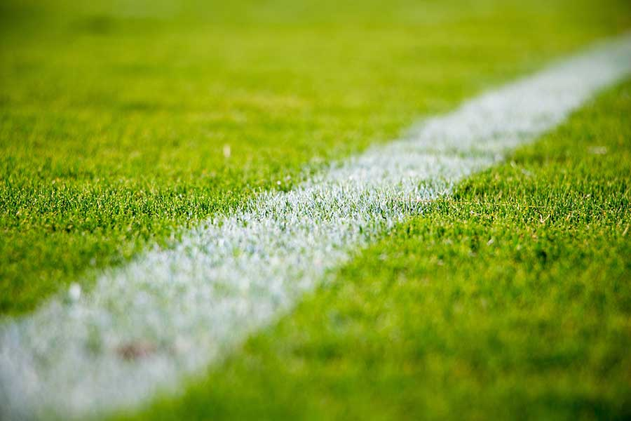 White line at the edge of a grass sports pitch