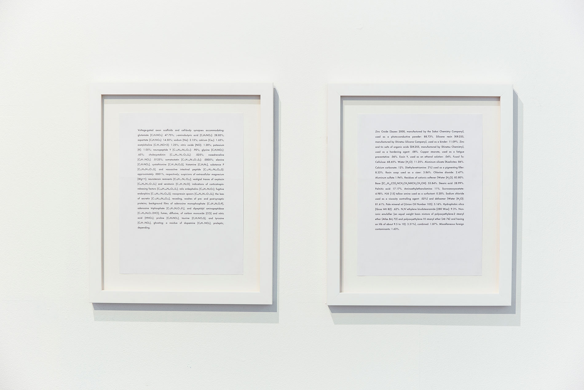 reading as art in exhibition